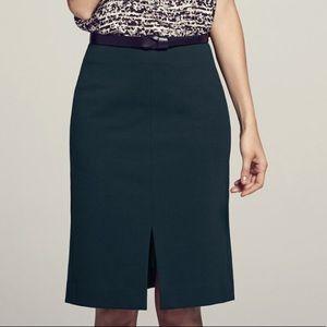 The Greenpoint Skirt